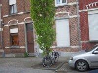 leuven_dhrvan-den-hove-luc_1731_2.JPG